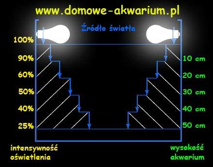 Oświetlenie Akwarium świetlówki Akwarystyczne